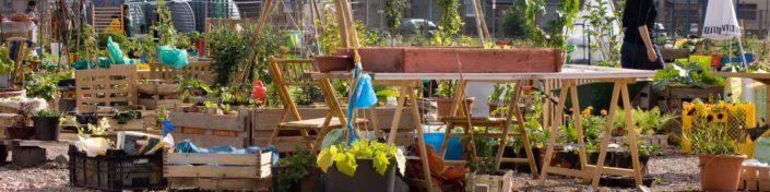 Urban Gardening in Österreich