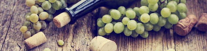 Heurige in Wien Weinflasche Weintrauben