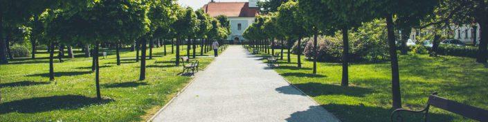Essen im Gastgarten im Park Wien